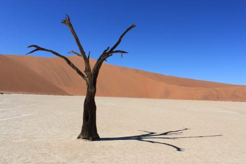 puščava Namib, Namibija