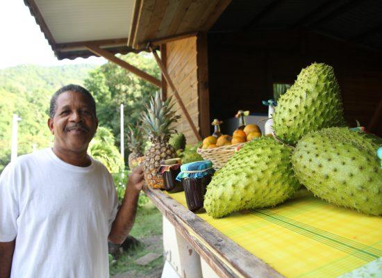 Martinik - gospod Gildber in njegov rum punch